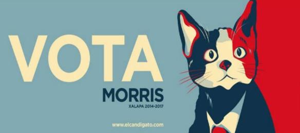 Babyshark's Minority Report - Candigato Morris